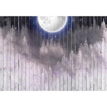 Poszter szürke-lila árnyalatban 13550 (368x254; 460x300; 254x184)