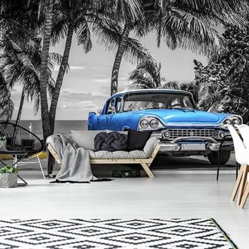 Poszter, autó 13335 (368x254; 368x280; 254x184 cm)