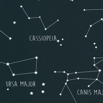 Planet csillagképeket ábrázoló tapéta 101916918