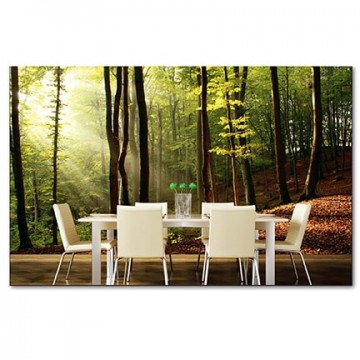 Poszter, erdő 375x250 / 225x250 cm / 150x250 cm (0098)